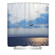 Osprey On The Potomac River Shower Curtain