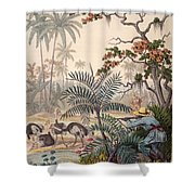Ostrich Hunting, 1853 Shower Curtain