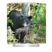 Our Little Shadow II Shower Curtain