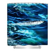 Out Fishing  Shower Curtain
