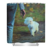 Out For A Stroll Shower Curtain by Karol Livote