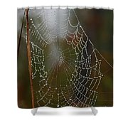 Out In The Morning Dew Shower Curtain