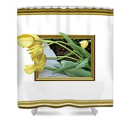 Out Of Frame Yellow Tulips Shower Curtain