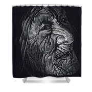 Out Of Greaheadedness Wisdome Comes Forth Shower Curtain by Yenni Harrison