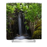 Out Of Nowhere Shower Curtain