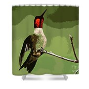 Out On A Limb - Green Shower Curtain