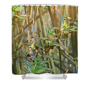 Out On The Pond Shower Curtain