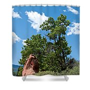 Outcropping Shower Curtain