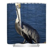 Over The Shoulder Pose Shower Curtain