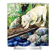 Overcoming Fear Shower Curtain