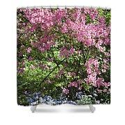 Overgrown Natural Beauty Shower Curtain