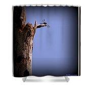 Overlook Shower Curtain
