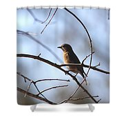 Overseer Shower Curtain