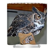 Owl Together Now Shower Curtain by LeeAnn McLaneGoetz McLaneGoetzStudioLLCcom