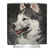 Ozzie Shower Curtain