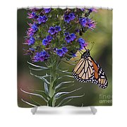 Pacific Grove Monarch Shower Curtain