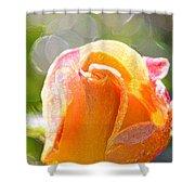 Paint Daub Yellow Rose Shower Curtain