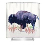 Painted Buffalo Shower Curtain