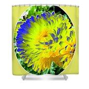Painted Chrysanthemums Shower Curtain