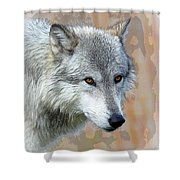 Painted Grey Wolf Shower Curtain