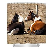 Painted Horses I Shower Curtain