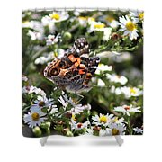 Painted Lady - Surrounded In White Shower Curtain