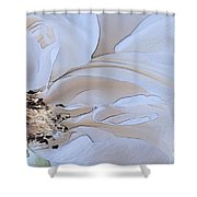 Painted Lady Shower Curtain
