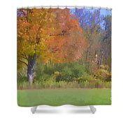 Painted Leaves Of Autumn Shower Curtain