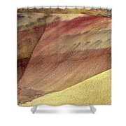Painted Patterns Shower Curtain by Mike  Dawson