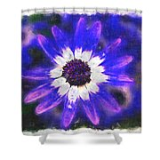 Painted Purple  Shower Curtain