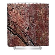 Painted Rocks At Hossa With Stone Age Paintings Shower Curtain