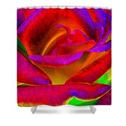 Painted Rose 1 Shower Curtain