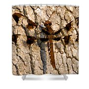 Painted Skimmer On Oak Shower Curtain