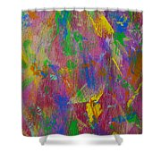 Painted Wooden Wall Shower Curtain