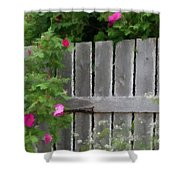 Painterly Fence And Roses Shower Curtain