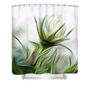 Painterly White Roses Shower Curtain
