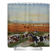 Painting Cows On Cors Caron Tregaron Shower Curtain