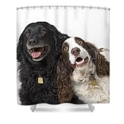 Pair Of Canine Friends Shower Curtain