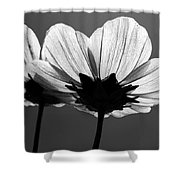 Pair Of Cosmia Flower Shower Curtain