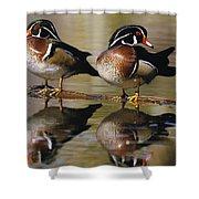 Pair Of Wild Birds Shower Curtain