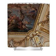 Palace Ceiling Detail Shower Curtain