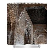 Palace Stonework Shower Curtain