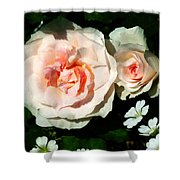Pale Pink Roses In Garden Shower Curtain