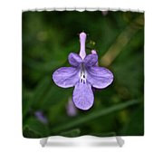 Pale Purple Shower Curtain