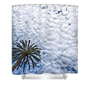Palm And Dramatic Sky Shower Curtain
