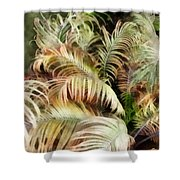 Palm Bank Shower Curtain