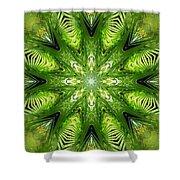 Palm Kaleidoscope 11 Shower Curtain