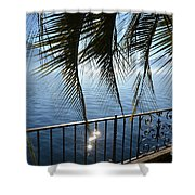 Palm Leaves On A Foggy Lake Shower Curtain