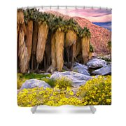 Palm Oasis And Wildflowers Shower Curtain