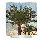 Palm On The Avenida Shower Curtain